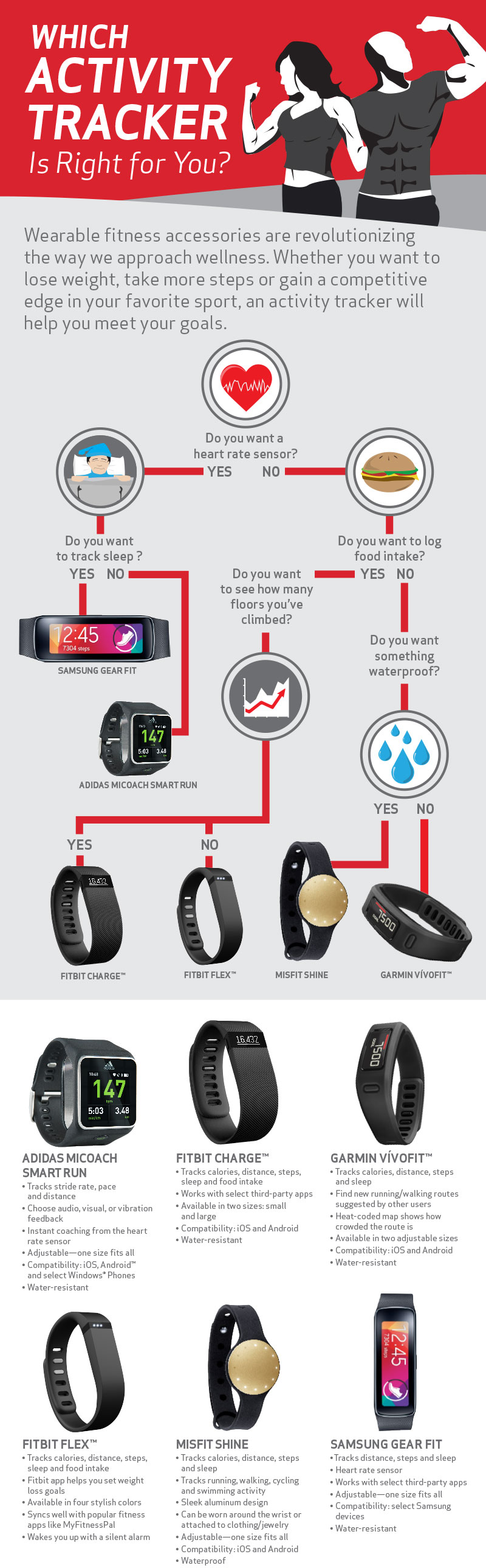 accessories-for-fitness-level-3500-infographic-con-800x2576-main-051315-1