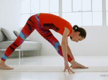 266_feat_Single-Leg-Forward-Bend
